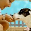 Adyligeti Állatorvosi Rendelő