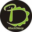 Black Sheep Fénymásolószalon - Jaki (Magyar jakobinusok tere)
