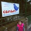 Csiribiri Használt Gyermekruha