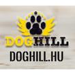 Doghill Kutyapanzió