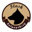 Flash Kutyapékség - Üteg utca