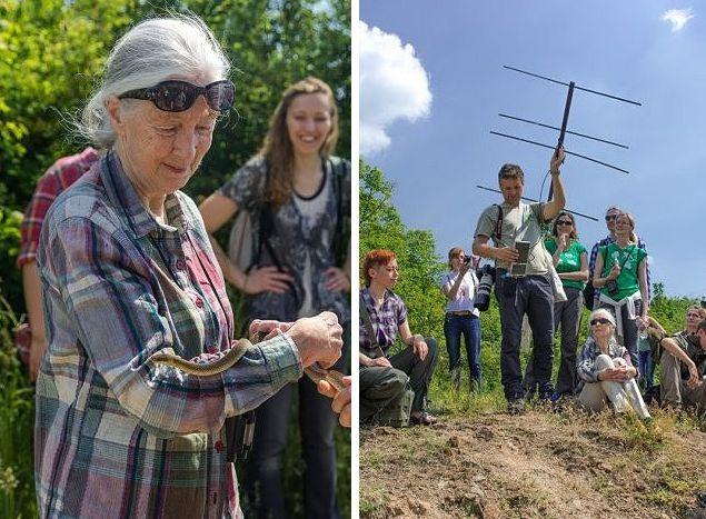 Nyomkövetővel ellátott haragossiklókat keresnek Jane Godall társaságában (Fotó: turistamagazin.hu)